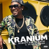Nobody Has to Know (feat. Ty Dolla $ign) - Kranium Cover Art