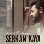 Serkan Kaya - Mesele artwork