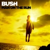 The Only Way Out - Bush