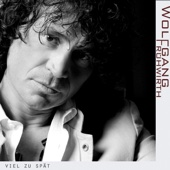 Wolfgang Frühwirth - Viel zu spät Grafik