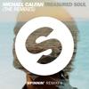 Treasured Soul (The Remixes) - Single