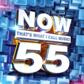 Various Artists - NOW That's What I Call Music, Vol. 55