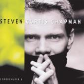 Steven Curtis Chapman - Dive artwork