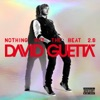 Nothing But the Beat 2.0, David Guetta
