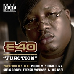 View album Function (Remix) [feat. Probelm, Young Jeezy, Chris Brown, French Montana & Red Café]