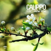 Come On Over - Calippo