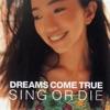 DREAMS COME TRUE - Song of Joy