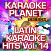 Latin Karaoke Hits, Vol. 14 (Karaoke Version)