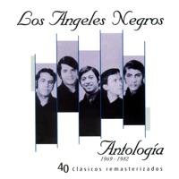 Y Volveré - Los Ángeles Negros