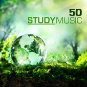 Heartbeat to Focus - Study Music