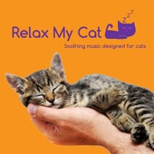 Relax My Cat - Music to Help with Cat Anxiety
