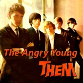 Them - The Angry Young Them  artwork