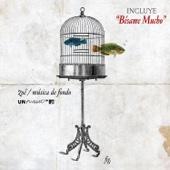 MTV Unplugged: Música de Fondo - Zoé