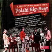 Z Archiwum Polskiego Radia: Polski Big Beat, Lata 1962 - 1964 Volume 2