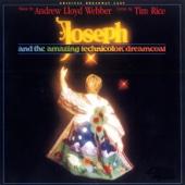 Joseph and the Amazing Technicolor Dreamcoat (Original Broadway Cast)