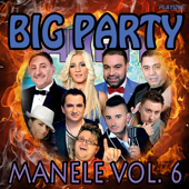 Big Party Manele, Vol. 6