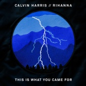 Calvin Harris - This Is What You Came For (feat. Rihanna)  arte