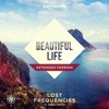 Beautiful Life(Extended Mix)