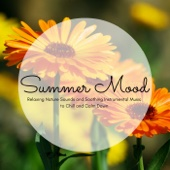 Summer Mood - Relaxing Nature Sounds and Soothing Instrumental Music to Chill and Calm Down