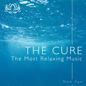 The Cure - The Most Relaxing Music Designed to Soothe You into a Perfect State of Relaxation and Meditation - Sleep Music Lullabies & Shakuhachi Sakano