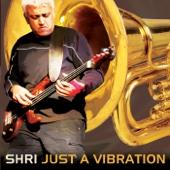 Kite (feat. Hammonds Saltaire Brass Band, Jasdeep Degun & Marc Layton-Bennett)