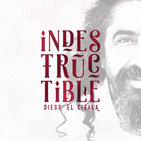 Diego El Cigala - Indestructible (2016) [MP3 @320 Kbps]