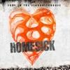 Homesick - Single, Fury In the Slaughterhouse