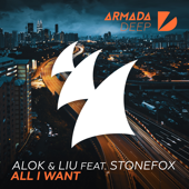 All I Want (feat. Stonefox)