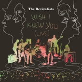 Wish I Knew You (Live from Tipitina's, New Orleans, La / 2016)