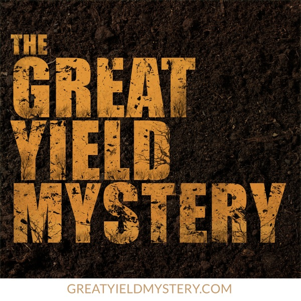 The Great Yield Mystery