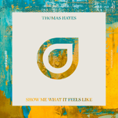Show Me What It Feels Like - Thomas Hayes
