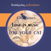 Intriguing Pulsations: Love in Music for Your Cat