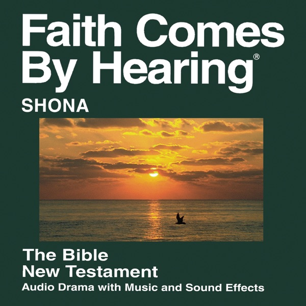 Shona Bible - 2001 Edition