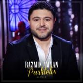 Pashtelis - Razmik Amyan