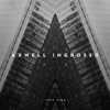 This Time - Single, Axwell Λ Ingrosso