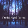 Enchanted Forest - Single