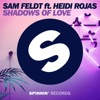 Shadows of Love (feat. Heidi Rojas) [Extended Mix]