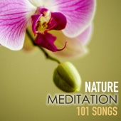 Nature Meditation 101 Songs