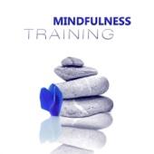 Mindfulness Training – 50 Transcendental Meditation Exercises for Transformation, Yoga Music for Breathing Techniques
