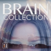 Brain Collection