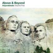 Anjunabeats, Vol. 5 cover art