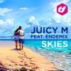 Skies (feat. Endemix)