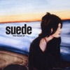 Buy The Best Of by Suede on iTunes (Rock)