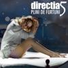 Plin De Furtuni - Single, Directia 5
