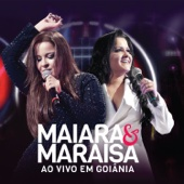 [Download] Medo Bobo (Ao Vivo) MP3