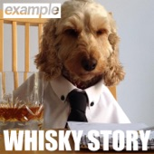 Whisky Story - Single