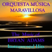 The Music Of Brian Adams Instrumental Hits