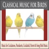 Classical Music for Birds Music for Cockatoos Parakeets Cockatiel Parrot Song Bird Music