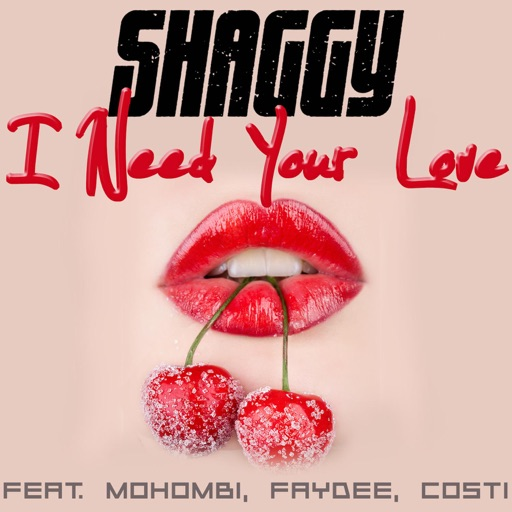 I Need Your Love (feat. Mohombi, Faydee & Costi) - Shaggy
