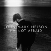John Mark Nelson - I'm Not Afraid  artwork